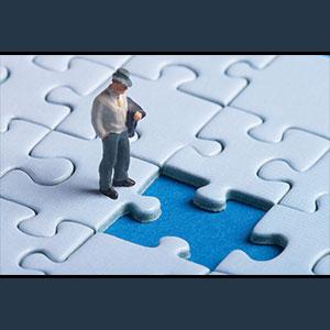 EIM-Puzzle.jpg