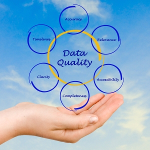 Just What is Data Quality?