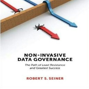 What is Non-Invasive Data Governance?