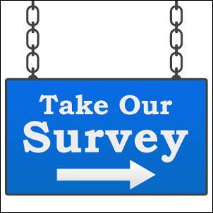 The IT Data Governance Survey