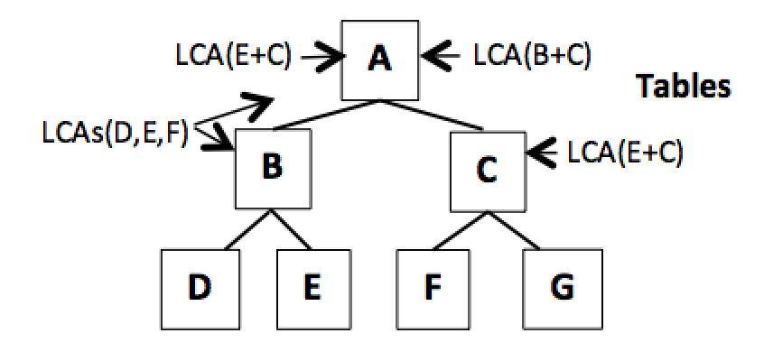 Figure 13. New LCA processing