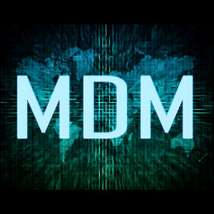 MDM Requires These Data Governance Activities